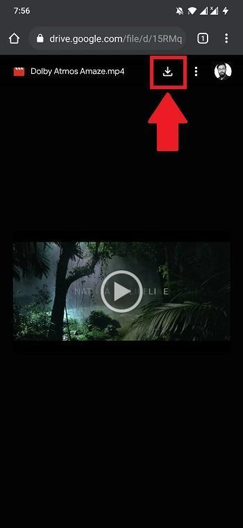 Download-Video