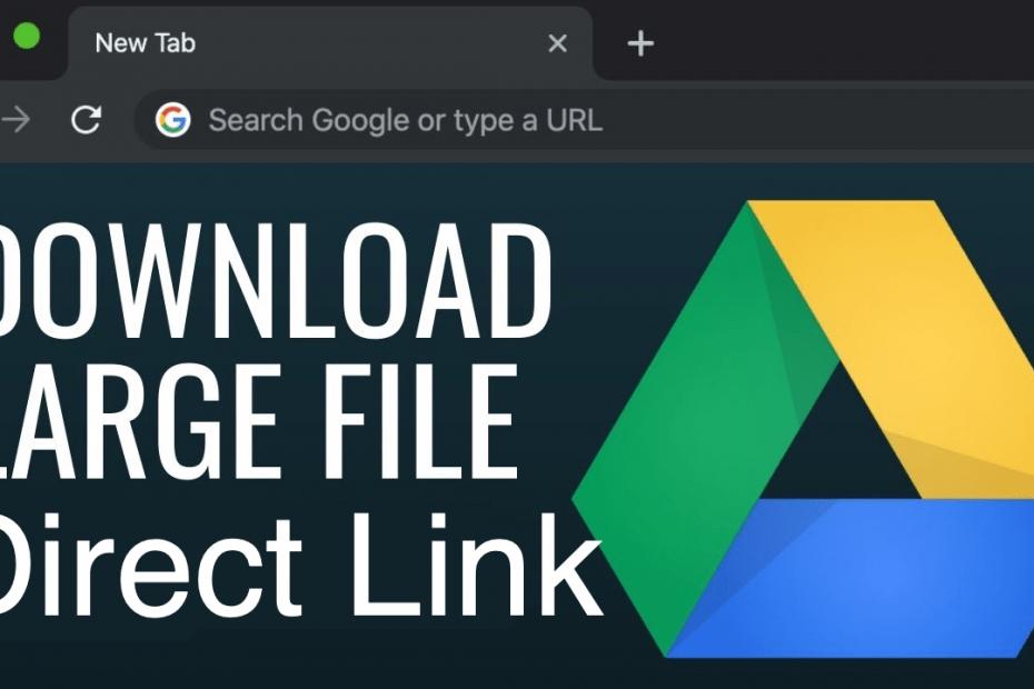 Download Google Drive Large File Direct Link