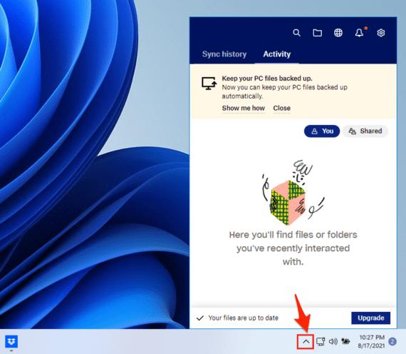 Dropbox_Windows_11