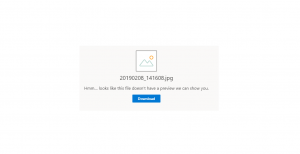 OneDrive Fix – Hmm….looks like this file doesn't have a preview we can show you