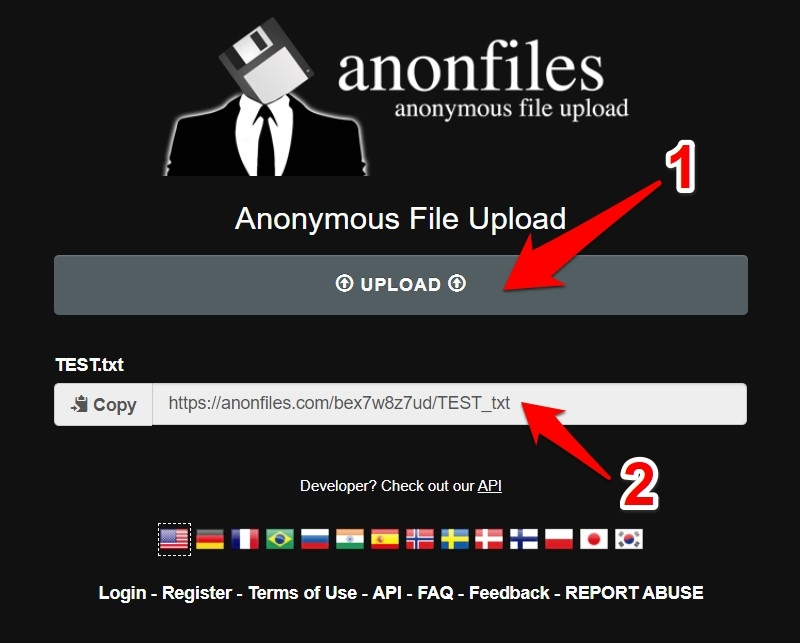 How to Use Anonfiles