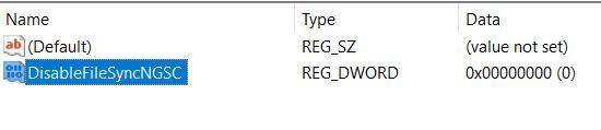 Name File DisableFileSyncNGSC