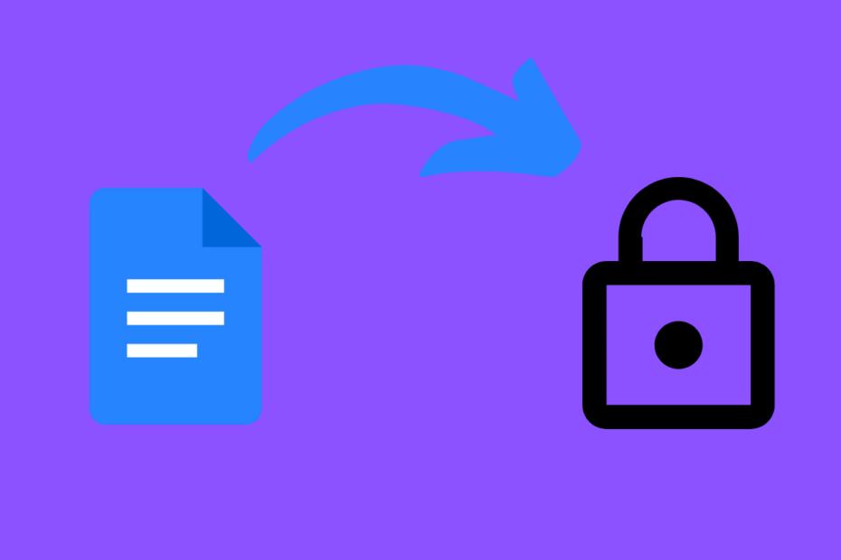 Password Lock Google Docs and PDF