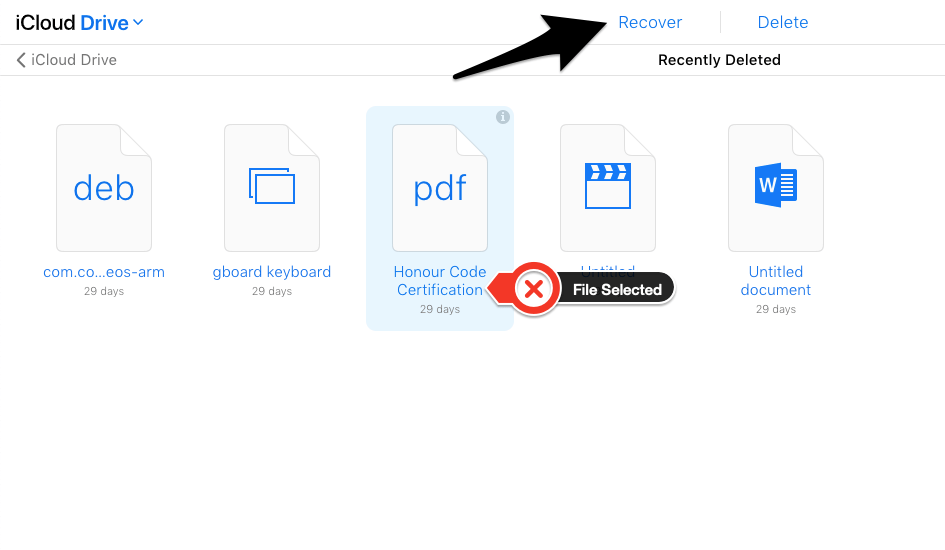 Select File Recover